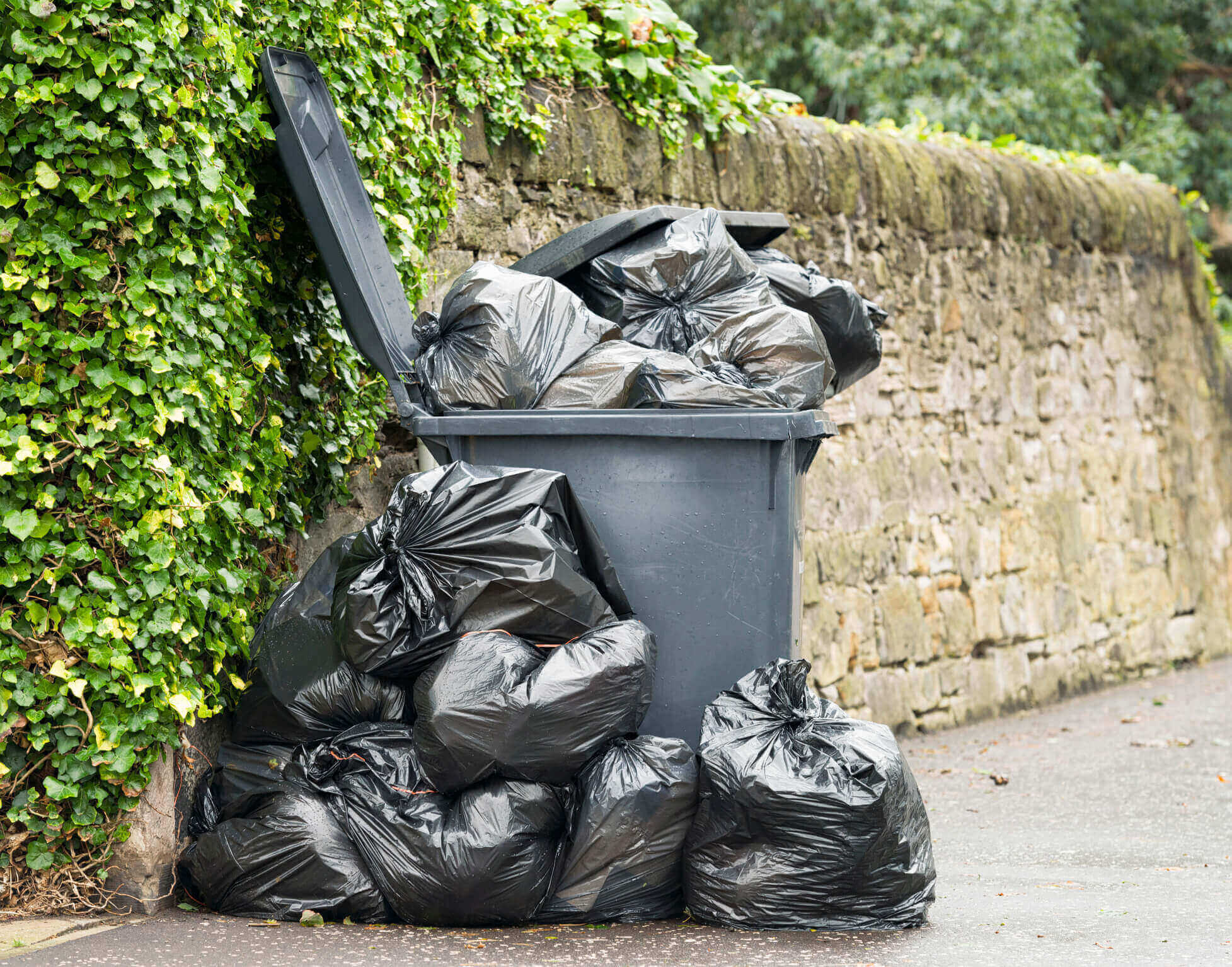 Landlord insurance image of bins